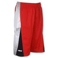 Nike Lebron Gravity Shorts