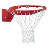 Ransome Shot Basketball Net