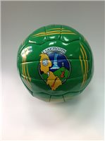 Introsports Leitrim Football - Green/Gold