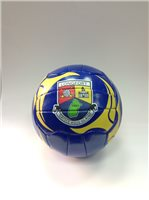 Introsports Longford Football - Blue/Yellow