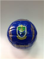 Introsports Roscommon Football - Royal/Gold