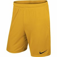 Nike Youth Park II Knit Short N/Brief - University Gold/Black