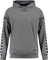 Hummel Authentic Charge Poly Hoodie - Youth -Dark Grey Melange