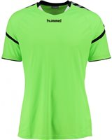 Hummel Authentic Charge Poly Jersey SS - Youth -Green Gecko