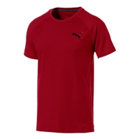 Puma Mens Evostripe Move T-Shirt - Red Dahlia
