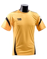 Briga Core Training Tee - Amb/Blk