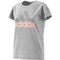 Adidas Womens Essentials Linear T-Shirt - Grey/Pink