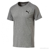Puma Mens Evostripe Move T-Shirt - Grey