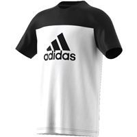 Adidas YB Training EQ Tee - White/Black