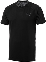 Puma Mens Evostripe Move Tee - Black