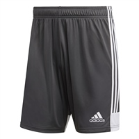 Adidas TASTIGO 19 SHORTS - Grey/White