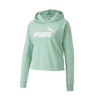 Puma WOMENS AMPLIFIED HOODIE - MIST GREEN