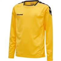 Hummel AUTHENTIC KIDS POLY JERSEY L/S - SPORTS YELLOW/BLACK