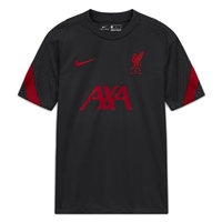 Nike LIVERPOOL FC STRIKE S/S TRAINING TOP - GREY/RED