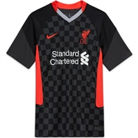 Nike LIVERPOOL FC 3RD JERSEY 20/21 - GREY/BLACK/RED